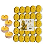 50 Citronella Tealight Candles - Summer Yellow - Indoor/Outdoor - 50 Pack - MADE IN USA