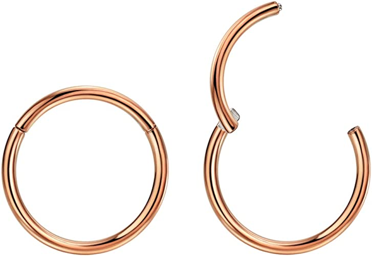 Lovebodyjewelry 316l Surgical Steel Hinged Nose Rings Hoop 20G 18G 16G 14G 12G 10G,Diameter 5mm to 14mm,Color Gold-Rose Gold-Silver-Black Septum Clicker Segment Lip Ear Cartilage Daith Earrings