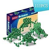 Science Unlimted Block Transformers Science Stegosaurus