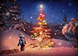 Avanti Christmas Cards, Holiday Magic, 10 Count