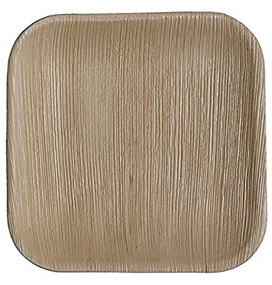 """CaterEco Square Palm Leaf 10"""" Dinner Plates 