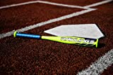 Rawlings 2020 Raptor USA Youth Tball Bat, 24 inch