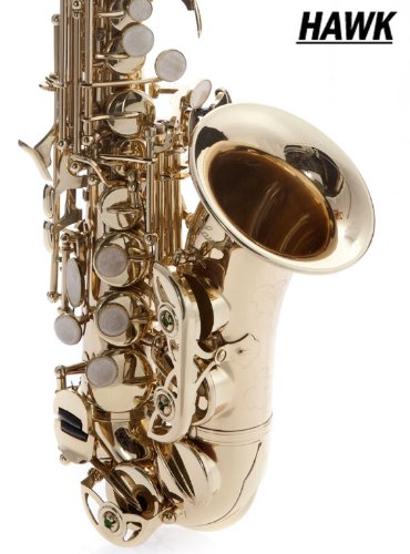 Hawk Curved Soprano Saxophone Gold with Case, Mouthpiece and Reed by Hawk (Image #2)