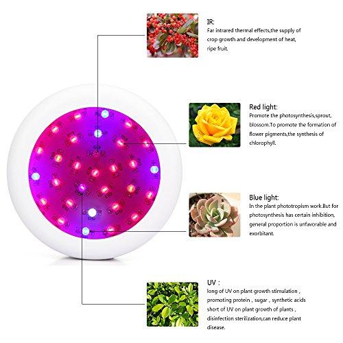 51oHr hGZGL - Morsen LED Mini UFO 300w 600W 900W Double Chips LED Grow Light