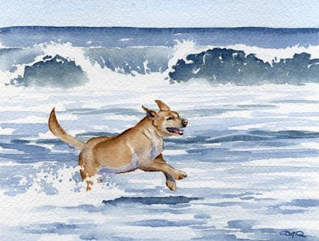 """""""Labrador Retriever"""" Dog Art Print Signed by Artist DJ Rogers"""