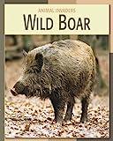 Wild Boar, Barbara Somervill and Susan H. Gray, 1602793298