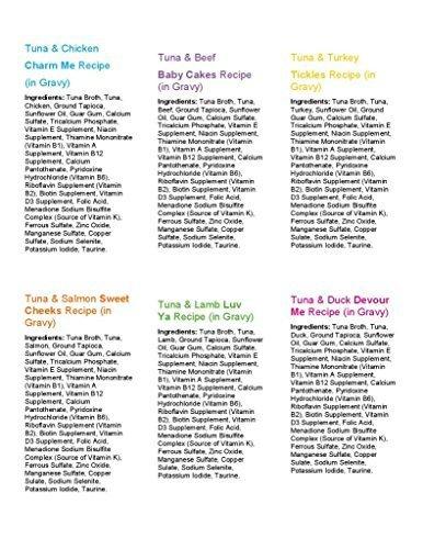 Weruva Best Feline Friend (BFF) Pouch Variety Pack Cat Food, Pouch 3oz Variety #2 (24 pouches)