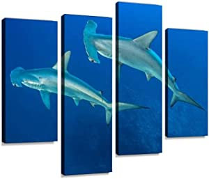 HIPOLOTUS 4 Panel Canvas Pictures Scalloped Hammerhead Shark divings and Pictures Wall Art Prints Paintings Stretched & Framed Poster Home Living Room Decoration Ready to Hang