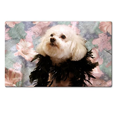 In Pets Costumes Of Images (Luxlady Large TableMat fifi in her costume IMAGE ID)