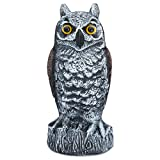 Bird Blinder Scarecrow Fake Owl Decoy - Pest Repellent Garden Protector - (Horned, Small)