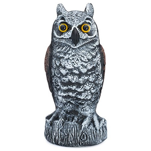 Scarecrow Fake Owl Decoy - Pest Repellent Garden Protector - (horned, (Hawks Rock Animal)
