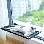 Pakeway Cat Window Perch Hammock Cat Bed with Upgraded Version 4 Suction Cups, Safest Cat Bed for Large Cat can Holds Up to 50lbs (Black) 20