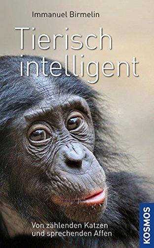 Tierisch Intelligent  Von Schlauen Katzen Und Sprechenden Affen