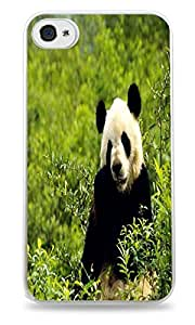 Popular Cute Panda Picture White Hardshell Case for iPhone 4 / 4S