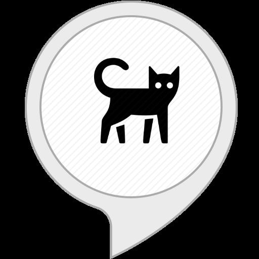 cosas divertidas y curiosas de gatos: Amazon.es: Alexa Skills