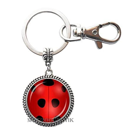Amazon.com: Ladybug - Llavero, diseño de mariquita, llavero ...