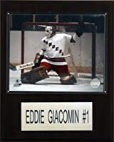 NHL Eddie Giacomin New York Rangers Player Plaque
