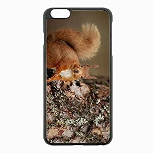 iPhone 6 Plus Black Hardshell Case 5.5inch - squirrel wood bark animal Desin Images Protector Back Cover