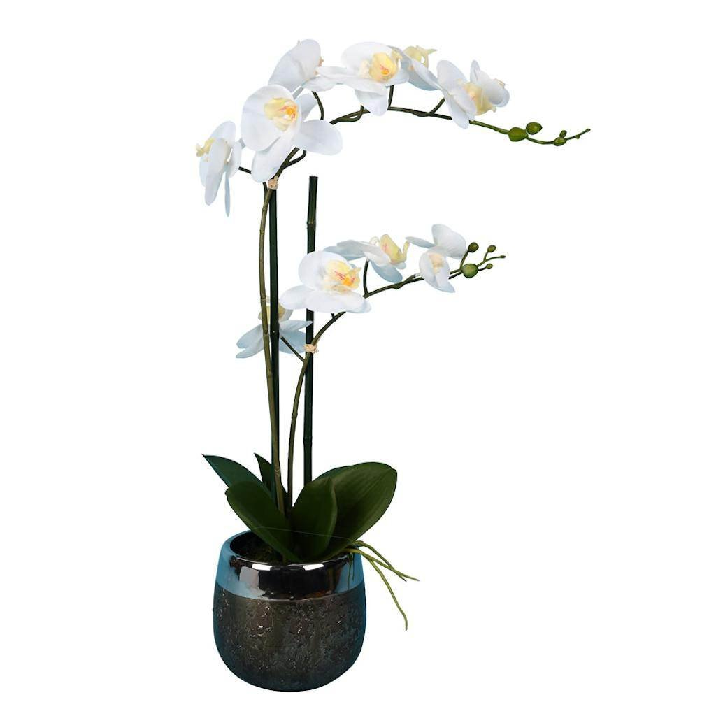 Vickerman FN180301 White Orchid Everyday Floral