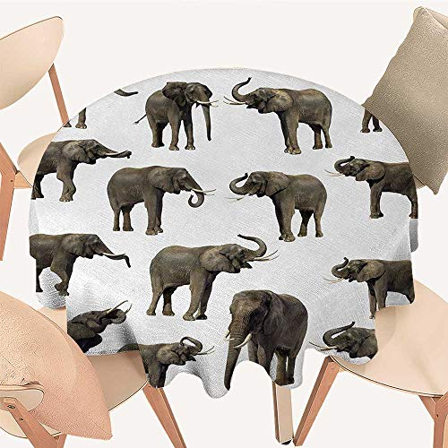 "Elephant Circular Table Cover Group of Elephants Tusk Ear Large Wild Life Jungle Mammal Forest Jungle Life Round Tablecloth D 60"" Sepia White"