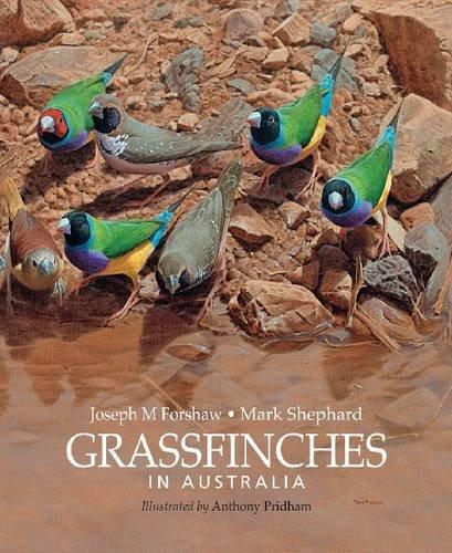Grassfinches in Australia Pdf