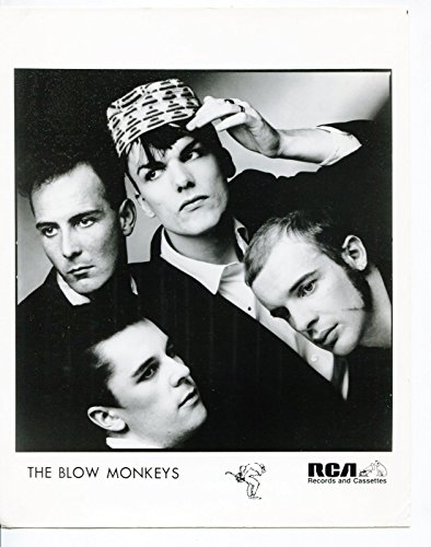 MOVIE PHOTO: Blow Monkeys-Robert Howard-Neville Henry-Mick Anker-Tony Kiley-8x10-B&W-Still
