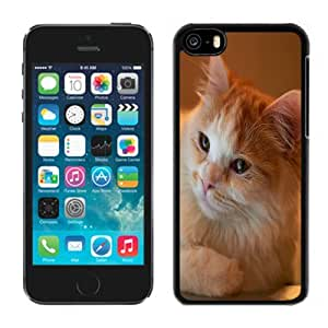 Fashionable Custom Designed iPhone 5C Phone Case With Orange Fluffy Cat_Black Phone Case