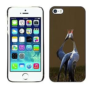 FlareStar Colour Printing Love Birds Songbird Valentines Stork cáscara Funda Case Caso de plástico para Apple iPhone 5 / iPhone 5S
