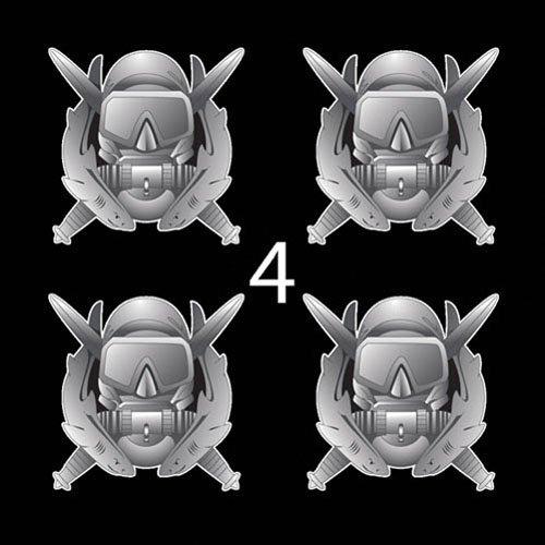 US Army Badge Basic Combat Diver 3