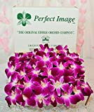 Fresh Purple/White''Edible'' Dendrobium Orchid Flowers (100 Count Pack)