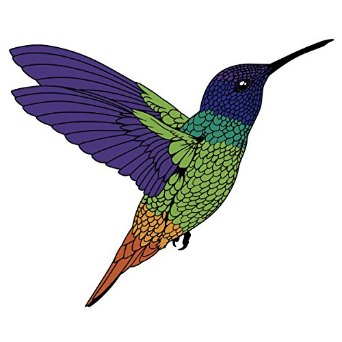 Golden-Tailed Sapphire Rainbow Humming Bird Decal -Indoor and Outdoor use!