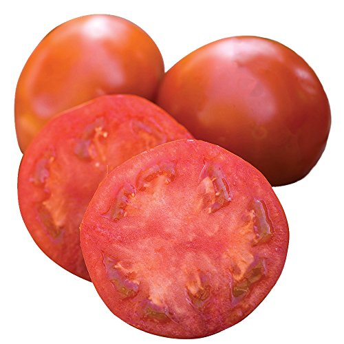 Burpee Sweet Seedless Tomato Seeds 15 seeds ()