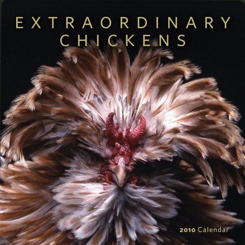 Extraordinary Chickens 2010 Wall Calendar by Stephen Green-Armytage (2009-08-01)