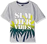 Crazy 8 Toddler Boys' Short Sleeve Crewneck Graphic Tee, Grey Summer Vibes, 3T