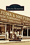 img - for South Norfolk book / textbook / text book