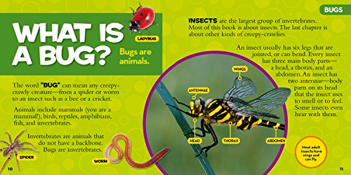National Geographic Little Kids First Big Book of Bugs (National Geographic Little Kids First Big Books) by National Geographic (Image #2)