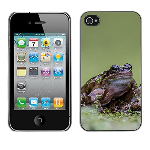 Premio Sottile Slim Cassa Custodia Case Cover Shell // F00030987 grenouilles Slink // Apple iPhone 4 4S 4G