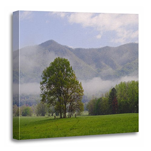 TORASS Canvas Wall Art Print USA Misty and Rich Mountain Cades Cove Field Artwork for Home Decor 20