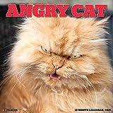 Angry Cat 2021 Wall Calendar