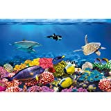 Undersea coral reef photo wall paper – aquarium fish sea mural – XXL undersea underwater world wall decoration - GREAT ART 82.7 Inch x 55 Inch