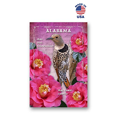 ALABAMA BIRD AND FLOWER postcard set of 20 identical postcards. AL state symbols post cards. Made in USA.