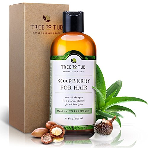Real, Organic Shampoo For Oily Hair, The Only pH 5.5 Balanced Peppermint Scalp Shampoo For Sensitive Skin – Women And Mens Shampoo With Fresh Eco-Friendly Wild Soapberries, Natural Hair Shampoo. - Mint Peppermint Shampoo
