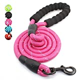 5 FT Strong Dog Leash with Comfortable Padded Handle and Highly Reflective Threads for Medium and Large Dogs (Hotpink)