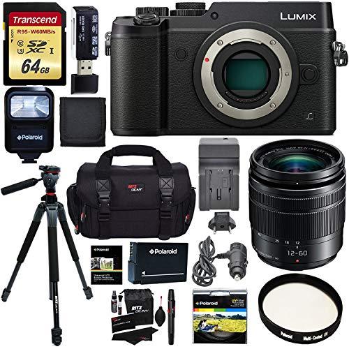 Panasonic LUMIX GX8 Mirrorless Micro Four Thirds Camera , G