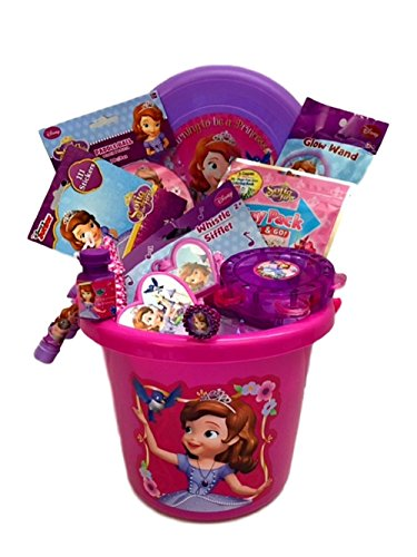Sophia Basket Filled with Toys Great Birthday Get Well Halloween Christmas Gift 11 Piece