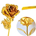 vinmax-24k-Gold-Dipped-Rose-Forever-Rose-Flowers-with-Long-Stem-for-Mothers-Day-Valentines-Day-Birthday