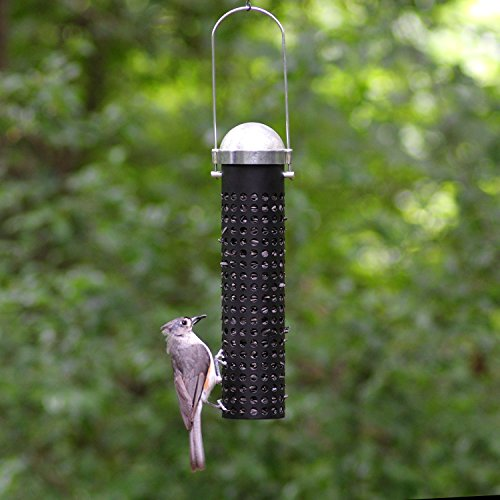 Alimentador de aves silvestres Perky-Pet 395 de 10 pulgadas y maní silvestre