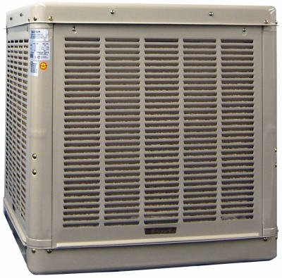 Champion Cooler 3000 DD 3000 CFM Cabinet Cooler