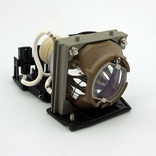 CTLAMP Professional 310-5027/725-10032/730-11241 Professional Replacement Projector Lamp Bulb with Housing Compatible with Dell 3300mp