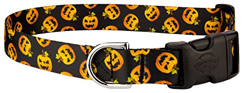 Country Brook Petz Happy Jack Featherweight Deluxe Dog Collar - Extra Small